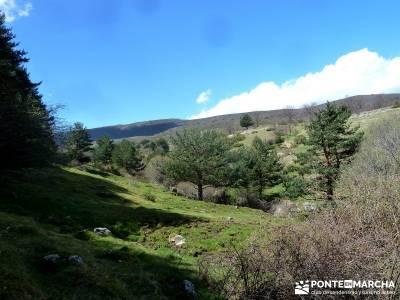 Sestil de Maillo - Cascada de Mojonavalle - Puerto de Canencia; rutas en madrid senderismo; año nue